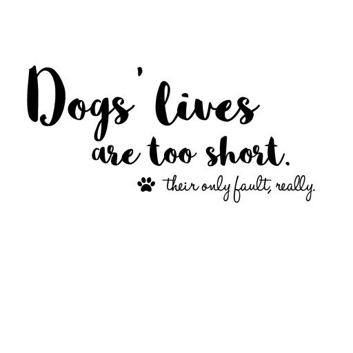 doggss.jpg